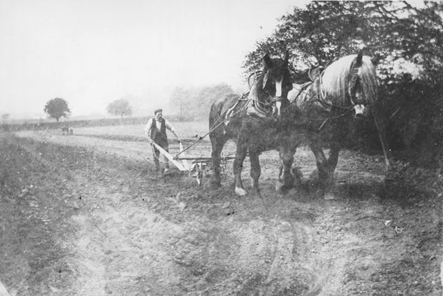 A horse drawn plough from Chamberlain's Farm, Riddings