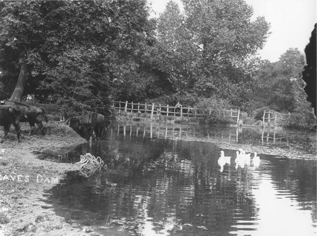 Egreaves Dam, Loscoe