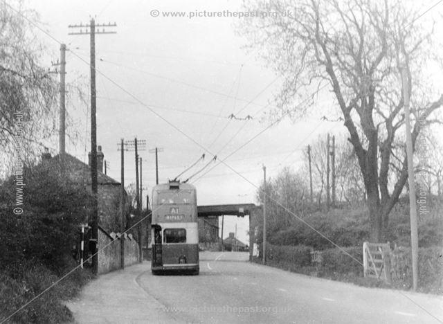 Trolley Bus near Iron Bridge, Nottingham Road, Ripley, 1952