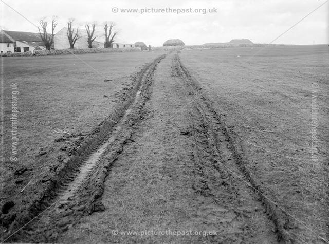 Track to Nunsfield Farm