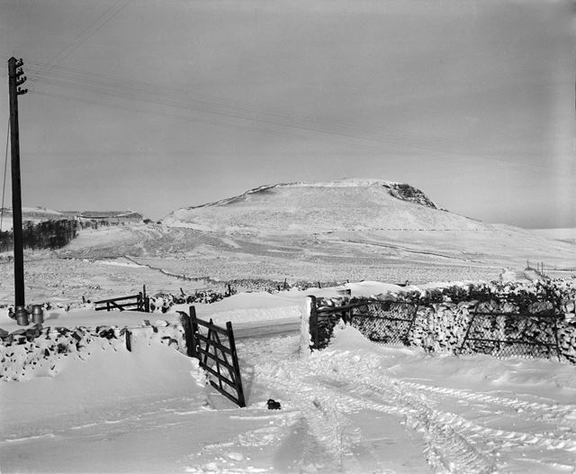 Farm gate and fields in the snow