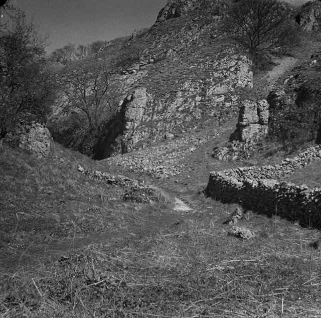 Nabs Dale, Dovedale