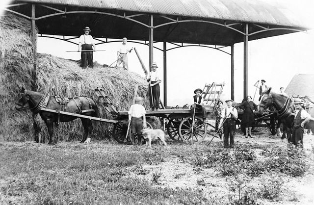 Long Eaton Co-operative Society Farm, Meadow Lane, c 1935