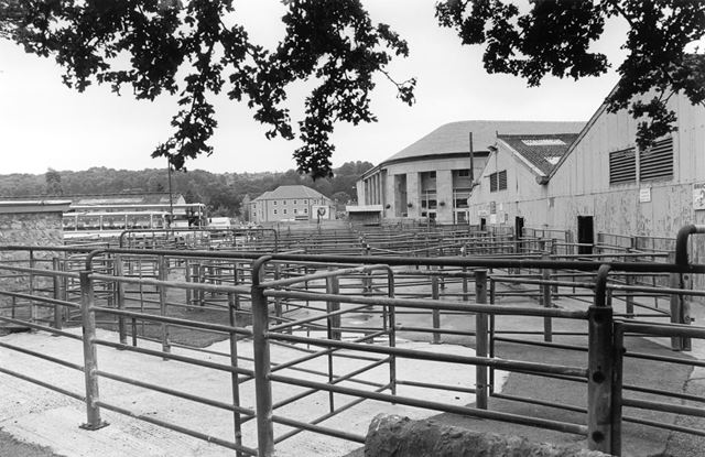 Old Cattle Market - Bagshaw's livestock auctioneers livestock pens
