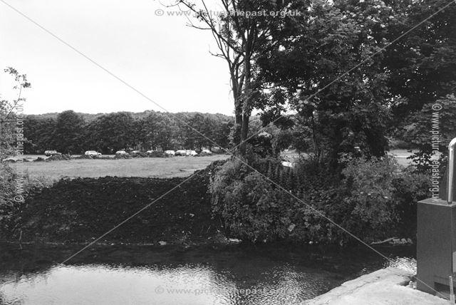 Smiths Island car park by the River Wye