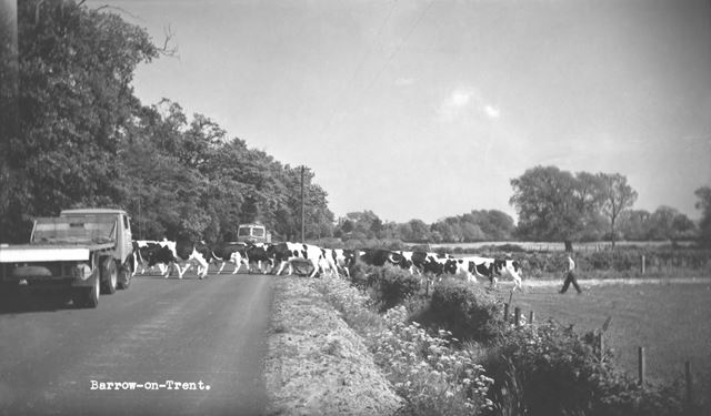 Milking Time, Barrow upon Trent