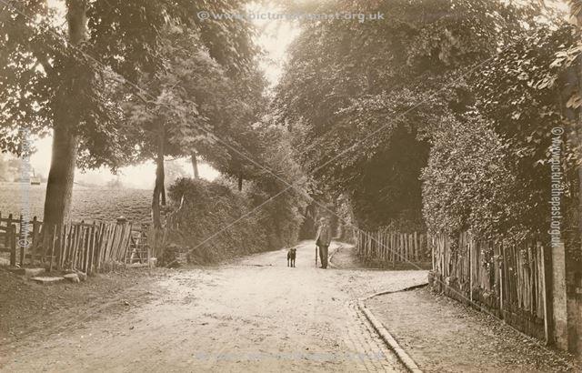 Lane in Snelston