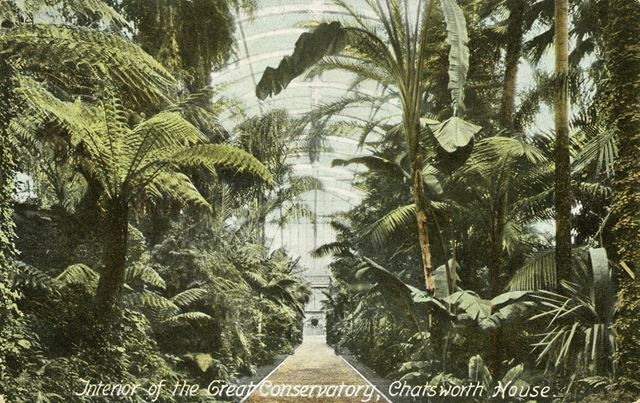 Interior of Sir Joseph Paxton's Great Conservatory - Chatsworth House gardens