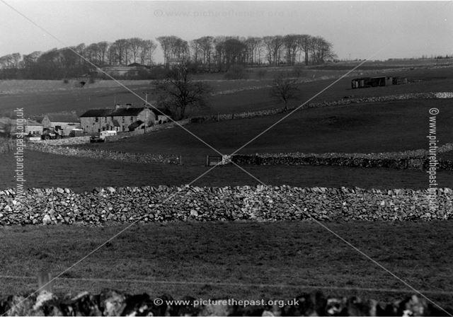 Custard field Farm
