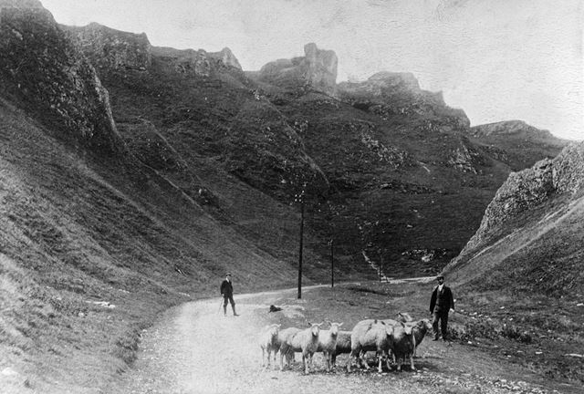 Men with sheep, The Winnats, Castleton, 1909