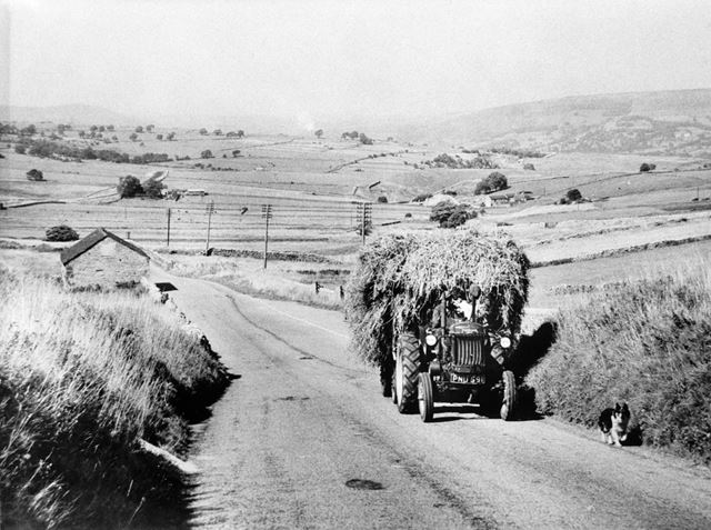 Farming at Bradwell, c 1960s