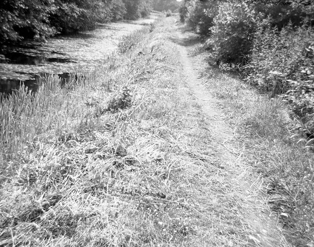 Towpath south of Gregory Tunnel