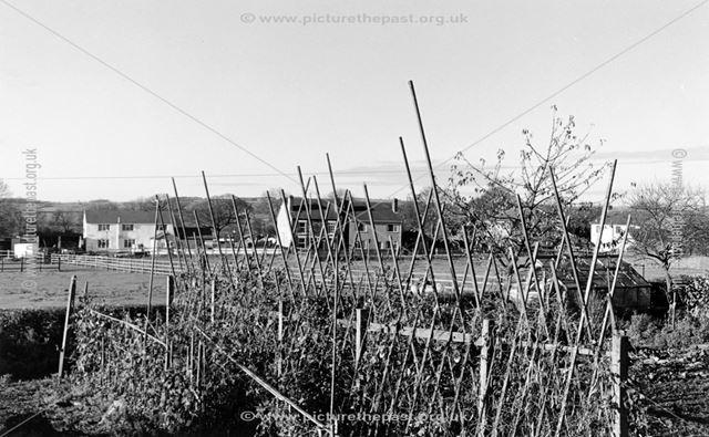 Nos 37-45 Ripley Road, Upper Hartshay, 1999