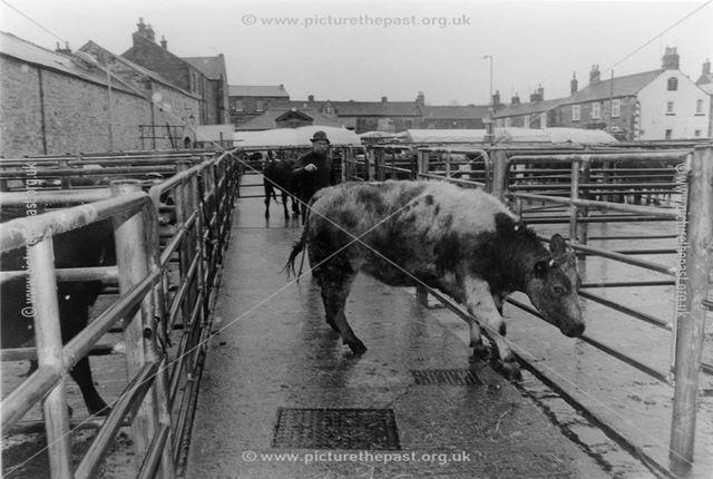 Cattle market pens, Old Cattle Market, Granby Road, Bakewell, 1996