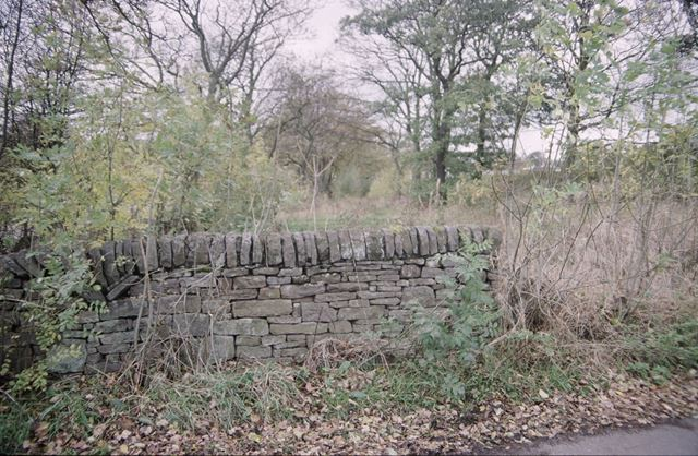 Wall above Stodhart Tunnel on the Peak Forest Tramroad?, Chapel Milton, c 1980s