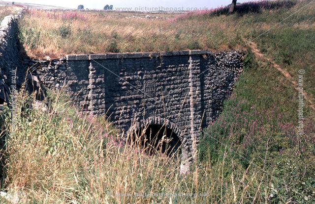 East Portal of Newhaven Road Bridge, near Parsley Hay, 1976