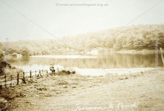 Killamarsh Ponds