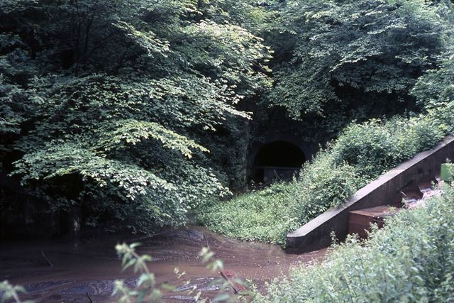 Butterley Tunnel, Cromford Canal, Golden Valley, 1965