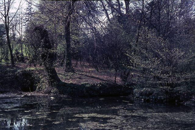 Approach to Cromford Whaft, Cromford Canal, Cromford, 1966