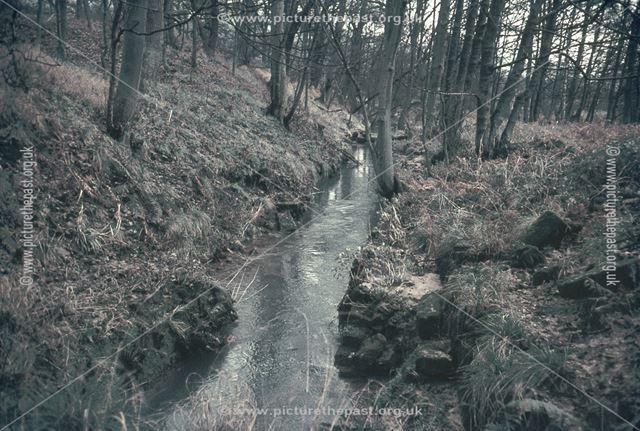 Hillcarr Sough, Downstream towards Derwent, Nr Stanton Lees, 1960