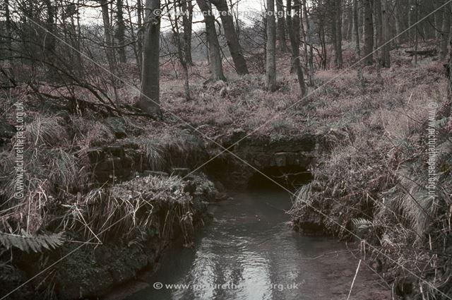 Hillcarr Sough, Hillcarr Wood, Nr Stanton Lees, 1960