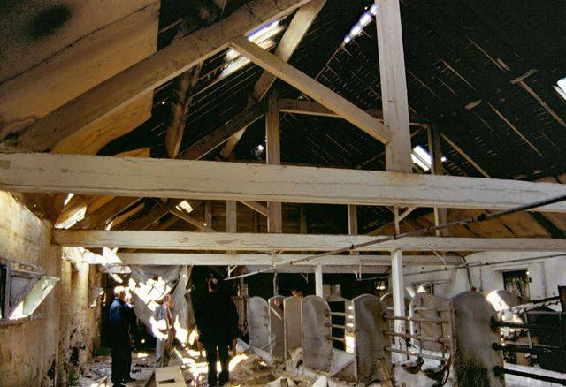 Interior of derelict cattle shed at Cotton's Farm