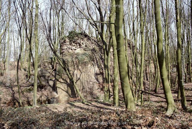 Horsley Castle