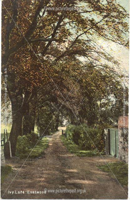 Ivy Lane, Eastwood