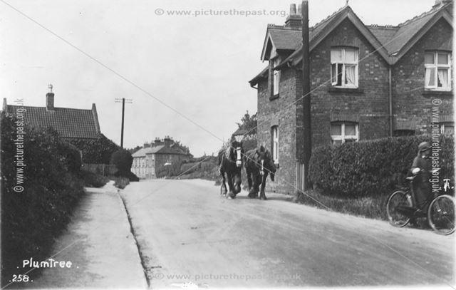 Main Road, Plumtree, c 1920