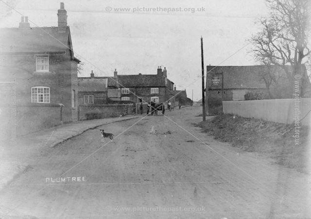 Main Road, Plumtree