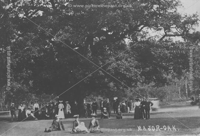 The Major Oak, Sherwood Forest, Edwindstowe, c 1900