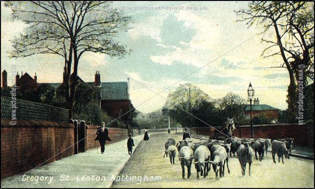 Gregory Street, Lenton, Nottingham, c 1900s