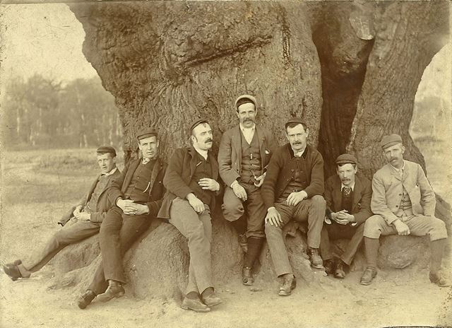 Miners from Marehay on a Cycling Trip to the Major Oak, Sherwood Forest, Edwinstowe, c 1900