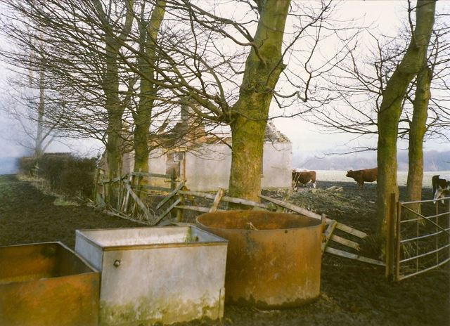 Remains of Glasshouse Common Cottage, nr Grasscroft Wood, New Whittington, 1994