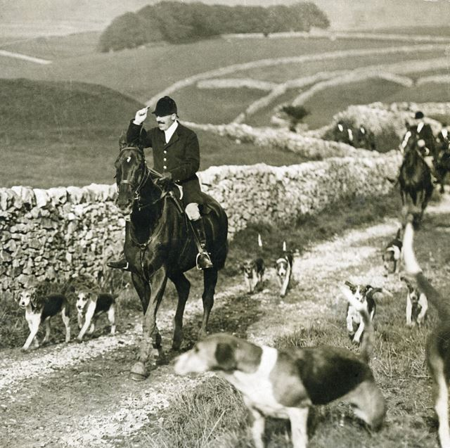 Fox hunting scene at unknown location, 1930s ?