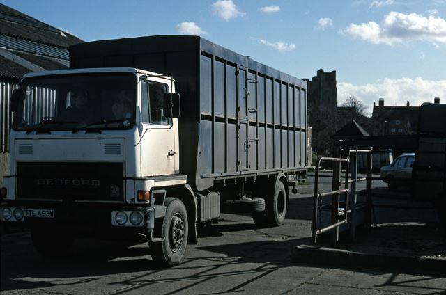 Cattle Lorry at Cattle Market, Tolney Lane, Newark, 1990