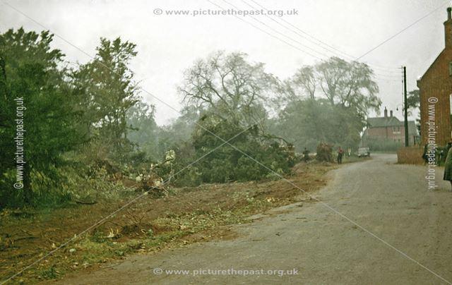 Clearance of Parkland Belonging to Muskham Grange, Main Street, North Muskham, 1963