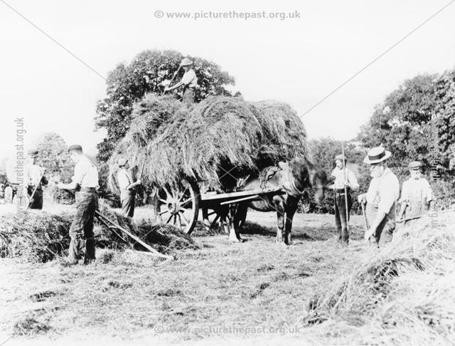 Hayloading at Flamstead (Farm?), Loscoe, 1898
