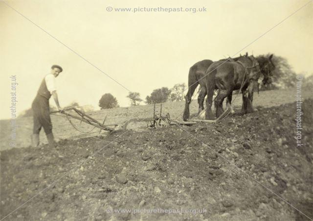 Single-furrow horse ploughing at Dale Bank Farm, Milltown (Near Ashover)