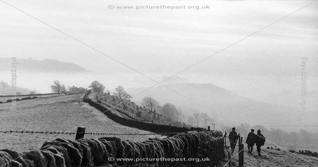 'January Mist', Longshaw, c 1980s