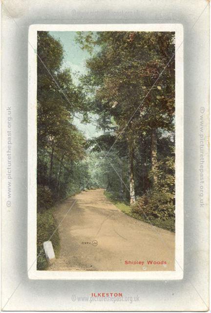 Shipley Woods