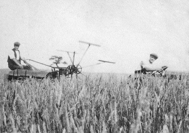 Harvesting Wheat, Dethick, c 1930s