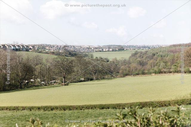 Barratt Estate houses -Castle Hill houses